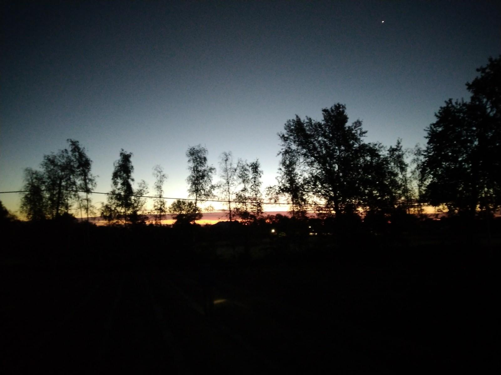 L'alba sullo zafferaneto